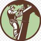 tree service New port richey